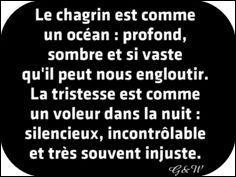 """Français : 3e - A quel genre littéraire appartiennent les mots """"amant, chagrin, ennui, souffrir, gage..."""" ?"""