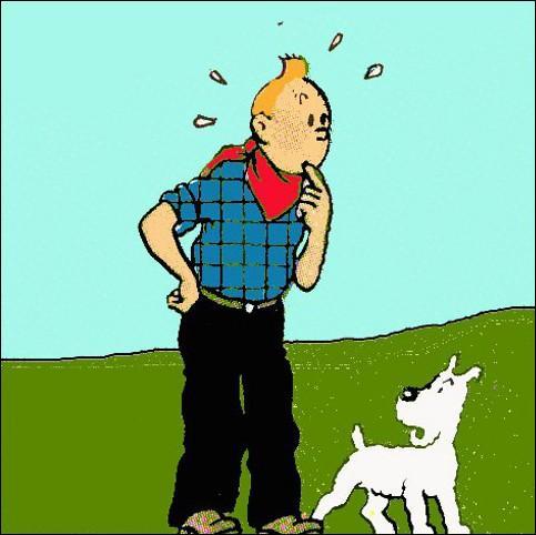 De quel moyen de transport Tintin va-t-il se servir pour rattraper le bandit ?