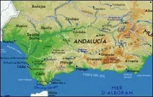 Il y a bien longtemps, lors de longues et belles virées dépaysantes en Andalousie, j'ai eu l'occasion de partager un petit déjeuner local, du côté des oliveraies. Que m'a-t-on présenté en toute simplicité ?