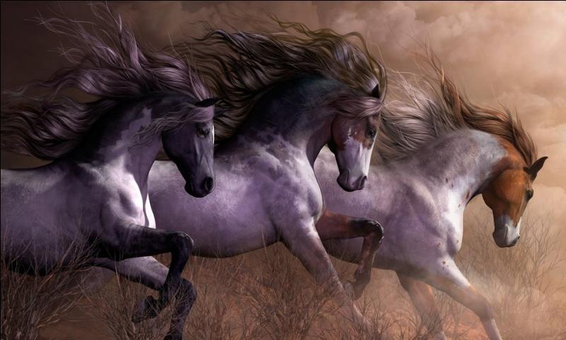 'Wild Horses' est une chanson de quel groupe mythique ?