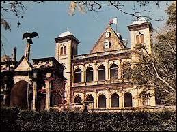 """Au sommet de la colline de Manjakamiadana se trouve le """"Palais de la Reine"""", siège des nobles d'autrefois. Que lui est-il arrivé le 6 novembre 1995 ?"""