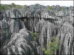 Éloignons-nous un peu de la capitale et dirigeons-nous vers l'Ouest, à environ 300 kilomètres. Quel relief, unique au monde, s'étendant sur 72.340 hectares, est issu de la séparation de Madagascar de la plaque africaine ?