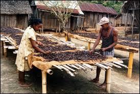 """""""SAVA"""" est une région de Madagascar regroupant quatre villes : Sambava, Vohémar, Andapa et la quatrième qui est la capitale mondiale de la vanille. De quelle ville s'agit-il ?"""
