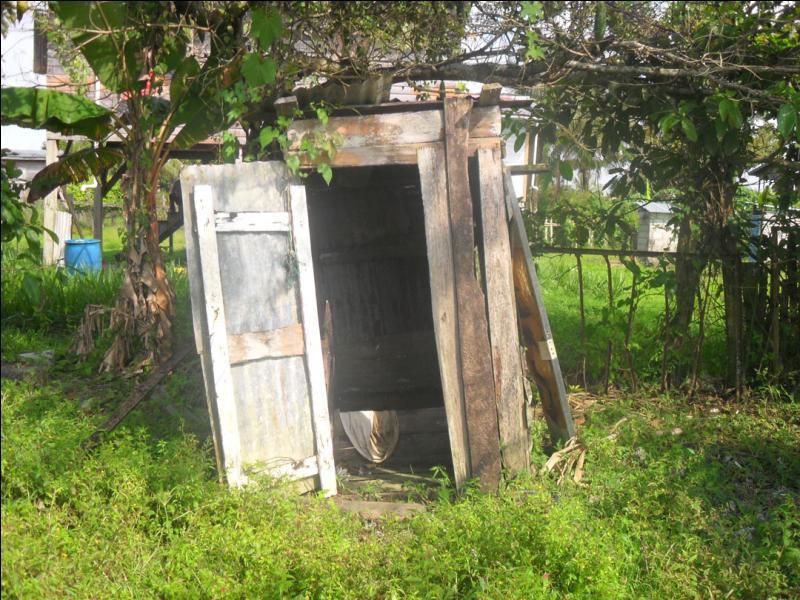 Quizz histoires de chiottes quiz culture g n rale for Cabane au fond du jardin laurent gerra