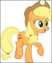 Comment s'appelle ce poney et a-t-il une sœur ?