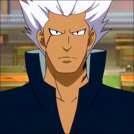 """Je fais partie de la guilde """"Fairy Tail"""" et je possède le pouvoir de transformation. Je suis..."""