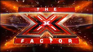 Ils ont participé à X Factor en 2010 :