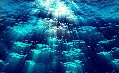 Dans l'eau de mer, il y a du sel, qui est aussi appelé...