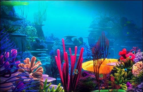 On en trouve beaucoup sous l'océan et on peut en voir sur la photo. Qu'est-ce ?