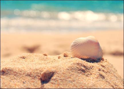 Pour finir, on en trouve dans l'océan, mais on peut aussi en trouver sur les plages. On peut même en faire des bijoux. Je parle bien sûr de...