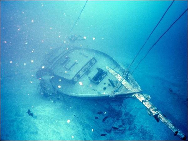 Que peut-on trouver sous l'océan ?