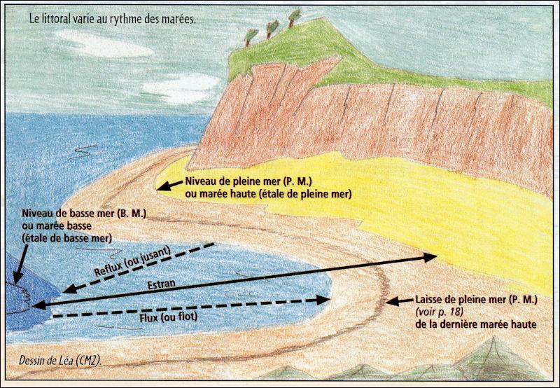 Quizz vocabulaire de la mer quiz vocabulaire for Portent of passage 5