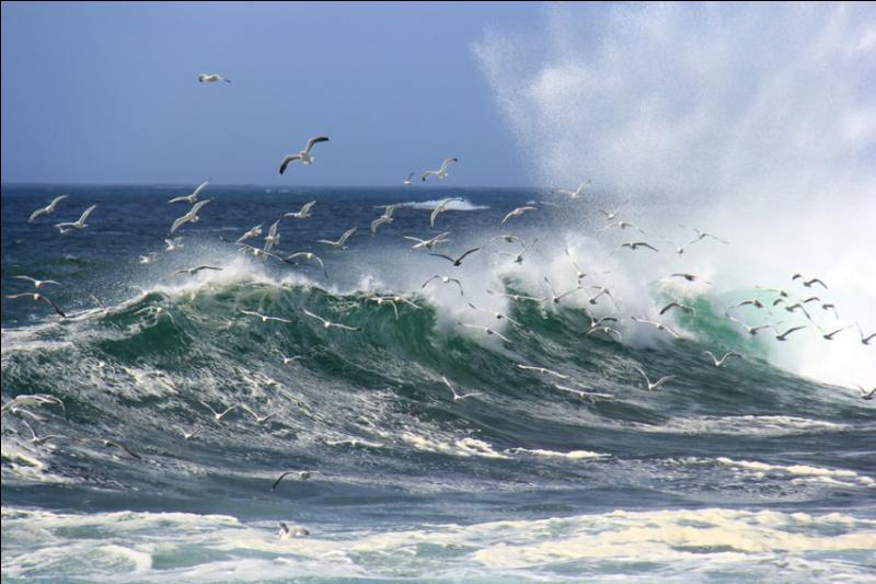 Comment doit être la mer pour former de bons marins ?