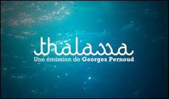 """""""Thalassa"""", émission dédiée au monde de la mer et des océans, est l'un des programmes phares de FR3/France 3. Il s'agit même de l'une des émissions ayant la plus grande longévité du paysage audiovisuel français. En effet, """"Thalassa"""" est diffusée sur les écrans depuis :"""