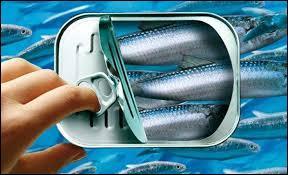 Parmi ces marques alimentaires de produits de la mer, quelle est celle qui commercialise uniquement de la conserverie de poisson ?
