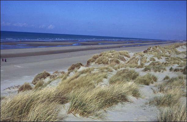 """Bray-Dunes possède deux lieux dunaires d'exception. Au sein de la dune du Perroquet, découvrez """"les trésors"""" de la plage et de la dune. Quelle mer borde ces lieux à protéger ?"""