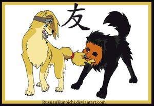 Encore deux personnages de l'akatsuki :
