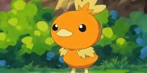 Les Pokémon (3)