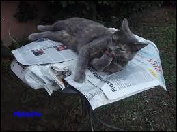 Certains matins, il reçoit des nouvelles fraîches !