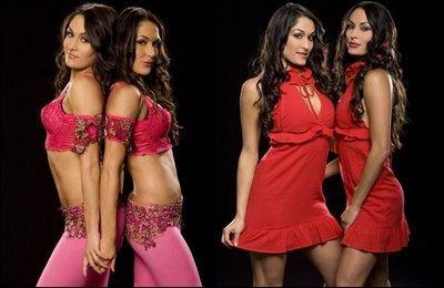 Les bella twins sont à :