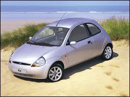 Cette petite voiture est une ...