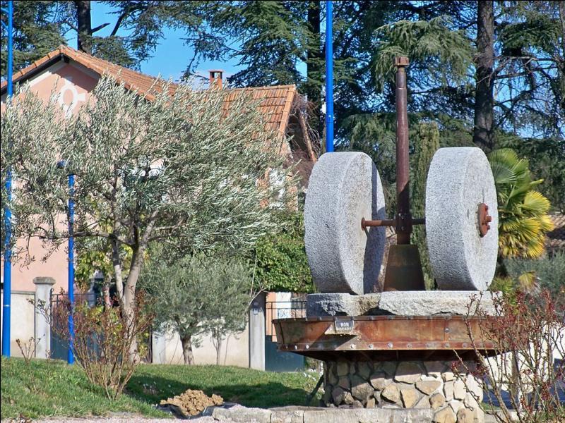Quelle ville, la plus peuplée des Alpes-de-Haute-Provence, bâtie à l'est du massif du Luberon, connaît un renouveau en oléiculture ?