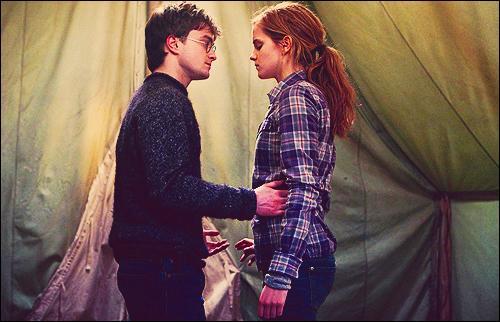 Les jours suivants, le trio tente de détruire sans succès le médaillon de Salazar Serpentard. Hermione Granger apprend aussi à Harry Potter que le vif d'or confié par Albus Dumbledore a, comme tous les vifs d'or, une mémoire et s'ouvre au sorcier qui l'a attrapé la première fois. Un soir, Hermione Granger annonce à Harry Potter que l'épée de Godric Gryffondor pourrait être la clé. Pourquoi ?
