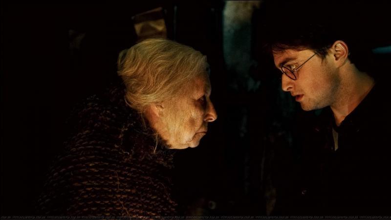 Après s'être aussi arrêtés un moment sur les tombes de James Potter et Lily Potter, Harry Potter et Hermione Granger sont abordés par Bathilda Tourdesac qui les emmène chez elle. Quelle particularité semble préoccuper Harry Potter et Hermione Granger ?