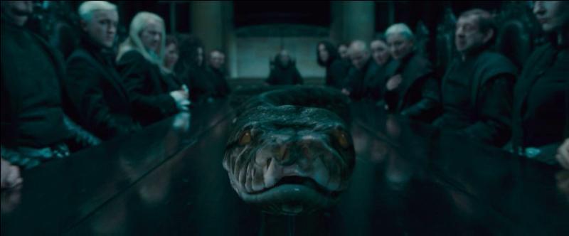 Ne s'adressant uniquement qu'à Harry Potter, Bathilda Tourdesac emmène le jeune homme à l'étage lorsqu'un événement pour le moins imprévu se produit. Mais que se passe-t-il ?