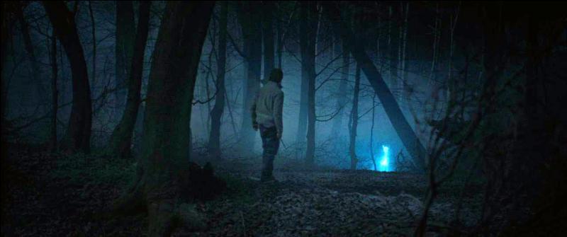 Une fois revenus dans leur camp de base, Hermione Granger et Harry Potter commencent à percer le mystère des reliques de la mort. Une nuit, alors que Harry Potter monte la garde, il aperçoit un Patronus. Quel animal est symbolisé par ce Patronus ?