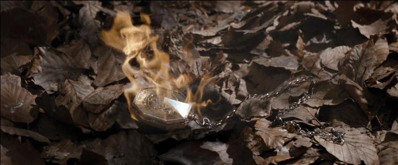 Harry Potter décide de suivre le Patronus et arrive à un lac où il aperçoit l'épée de Godric Gryffondor. Il descend dans le lac pour essayer de la récupérer. Il reçoit l'aide de Ron Weasley dans la confusion qui finit donc par réapparaître. Que se passe-t-il ensuite ?