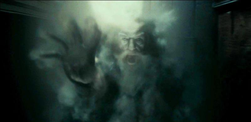 Arrivé au repaire où Harry Potter et ses amis seraient certains d'être à l'abri des Mangemorts, ils constatent que des sortilèges de défenses ont été placé à l'entrée. Un des enchantements placés est un fantôme du directeur de Poudlard, Albus Dumbledore. Qui a eu cette idée ?