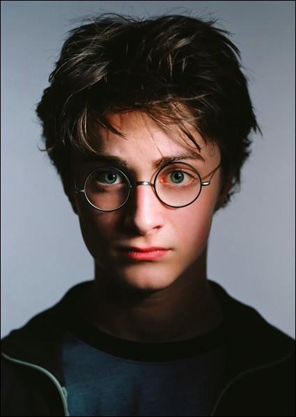 Harry est-il fils unique ?