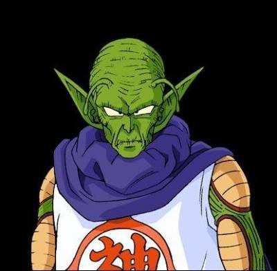 À la fin de Dragon Ball, après son rude combat contre Piccolo, qu'est-ce que ce personnage propose à Son Goku ?