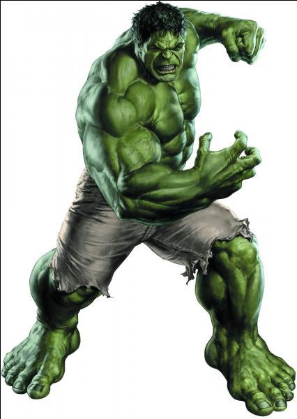 Quand il ne se transforme en Hulk, ce personnage a pour identité...