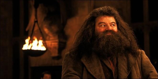 """Harry Potter : """"Hagrid, vous savez qui m'a fait cette cicatrice.""""Rubeus Hagrid : """"Tu sais Harry, tous les sorciers ne tournent pas très bien. Un jour, un sorcier a très mal tourné. Il s'appelait V..., il s'appelait V...""""Harry Potter : """"Vous voulez peut-être l'écrire ?""""Rubeus Hagrid : """"Oh non, je sais pas l'écrire. Très bien, Voldemort.""""Harry Potter : """"Voldemort ! """"Rubeus Hagrid : """"Chut ! """""""