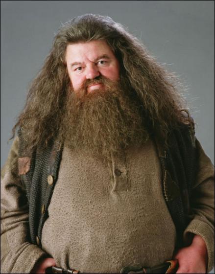 Qu'est-ce que Hagrid garde en secret ?
