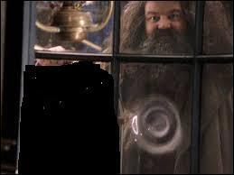 Qu'est-ce que Hagrid lui offre comme cadeau pour l'anniversaire de Harry ?
