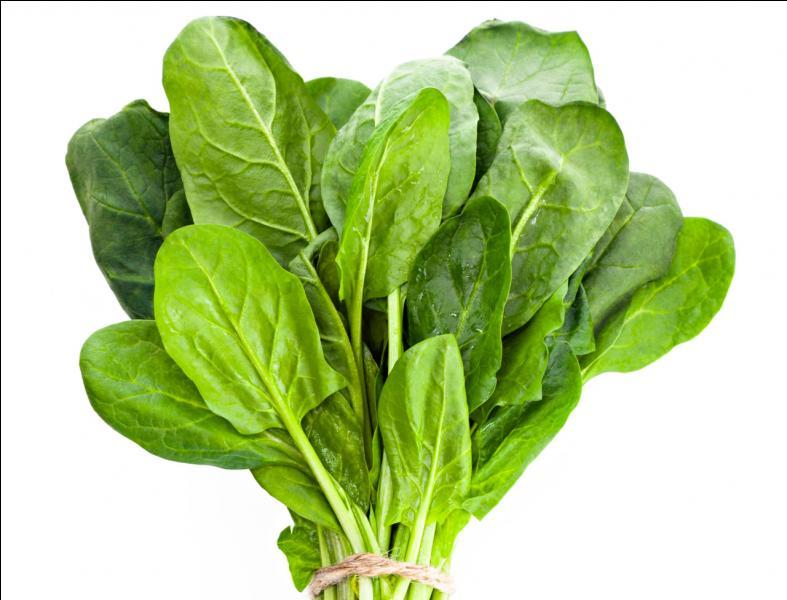 Qui va nous dire ce qu'est ce légume ?