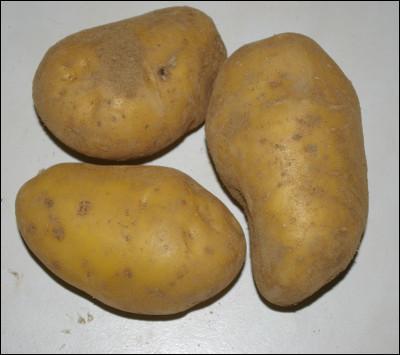 On recherche un bonne pomme de terre qui reste ferme pour déguster une raclette :