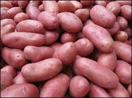 Qui va nous donner le nom de ces petites patates ?