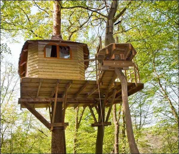 ma cabane au fond du jardin francis cabrel design de maison