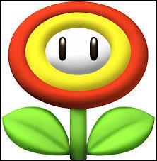 De quel jeu vient cette fleur ?