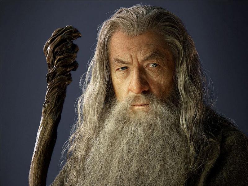 Gandalf le Gris, un sacré magicien incarné par :