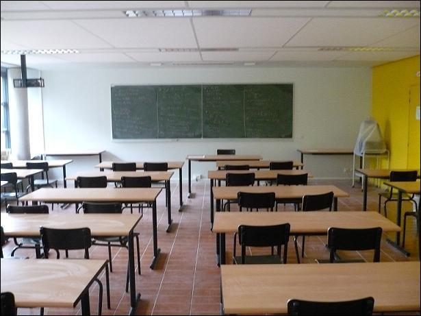 Les élèves présentant des difficultés d'apprentissage graves et durables et qui ne maîtrisent pas toutes les connaissances et compétences attendues à la fin de l'école primaire peuvent intégrer une...