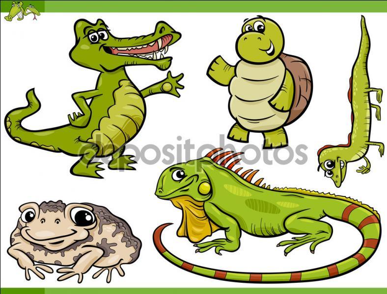 La phobie ou la peur des reptiles et amphibiens.