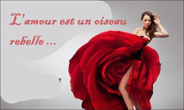 """Qui a composé l'Opéra dont on a tous retenu les mots célèbres """"L'amour est un oiseau rebelle"""" ?"""