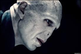Lesquels de ces sorciers se sont déjà battus avec Lord Voldemort ? Attention ces duels n'ont pas forcément eu lieu sous forme de 1 vs 1.