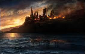 Bellatrix Lestrange s'est battue face à trois sorcières en même temps lors de la bataille de Poudlard. Lesquelles ?