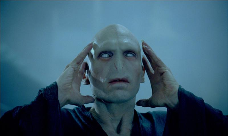 En combien de partie l'âme de Voldemort est-elle partagée au maximum dans la saga ?